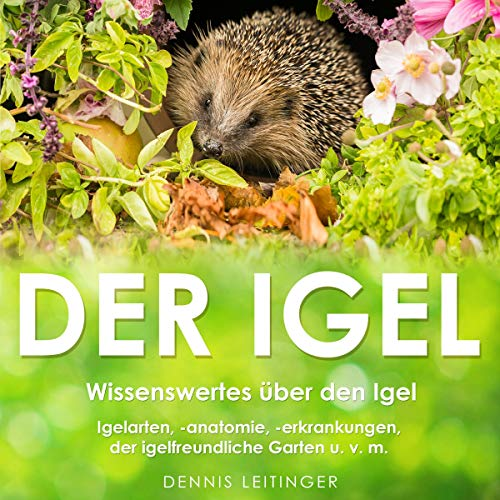 Der Igel: Wissenswertes über den Igel [The Hedgehog: Worth Knowing About the Hedgehog] Audiobook By Dennis Leitinger cover art