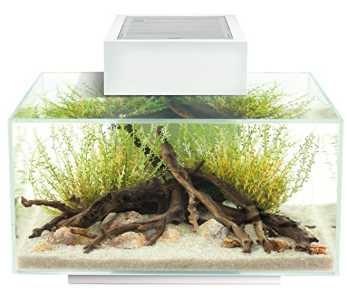 Fluval 15035 Edge 2.0 23l Aquarium Set, weiß