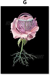 Teekuku Brain Heart Human Organs Medical Anatomy Wall Art Print Canvas Painting Nordic Posters and Prints Wall Pictures