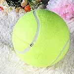 Big balle de tennis pour Chien 9.5 pouces #1