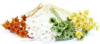 そらプリ hana oil プリザーブドフラワー ハーバリウム 福袋 花材 グリーン スターフラワーブロッサム グリーン系ミックス