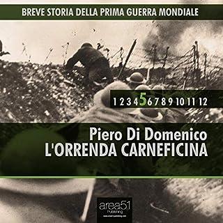 Breve storia della Prima Guerra Mondiale, Vol. 5 copertina