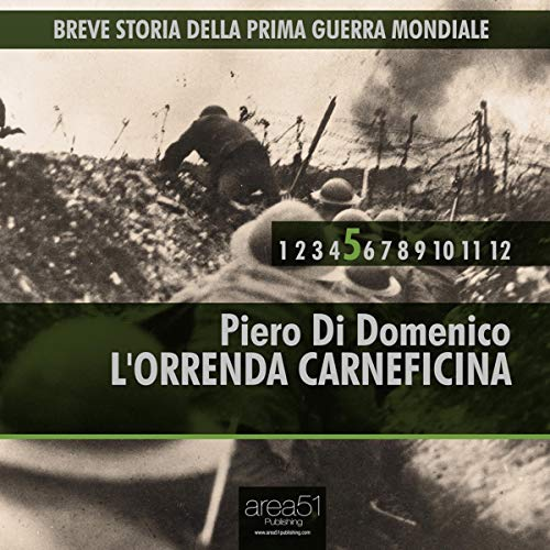 Breve storia della Prima Guerra Mondiale, Vol. 5 cover art