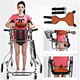 Andadores para discapacidad Andador para Ancianos Caminar Ayuda médica Adulta Que recorre la Carretilla for los Mayores Andador Hecho De Ayuda for Caminar (Color : Woman)
