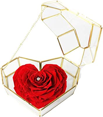 Amazon Com Gift For Girlfriend Wife Red Rose Handmade Preserved