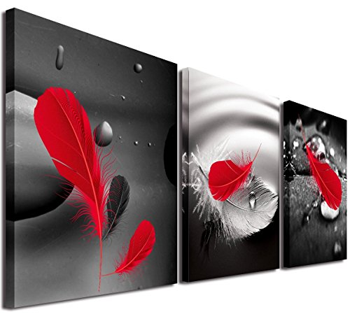 Mon Art Abstract Art in Black Background Red Feather on Canvas Print Wall Art Home Decor Modern Picture Artwork Decoration for Bathroom Bedroom Living Room Stretched and Framed,12'x12'x3Pcs