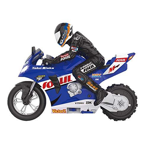 1/6 Self-Balancing RC Motorcycle Ca…