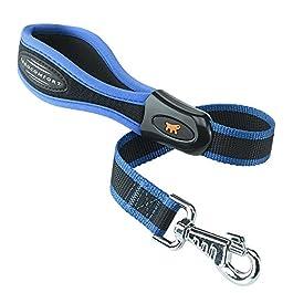 Ergocomfort Dog Lead Padded 25mm X 55cm Blue