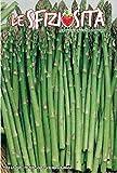 200 c.ca semi asparago selvatico - asparagus acutifolius in confezione originale prodotto in italia - sfiziosità vegetale - asparagi