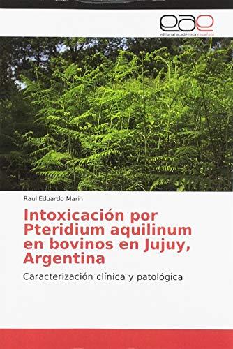 Intoxicación por Pteridium aquilinum en bovinos en Jujuy, Argentina: Caracterización clínica y patológica