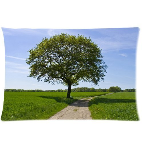 country road old high trees blue sky Zippered Pillow Cases Cover 20x30 Inch
