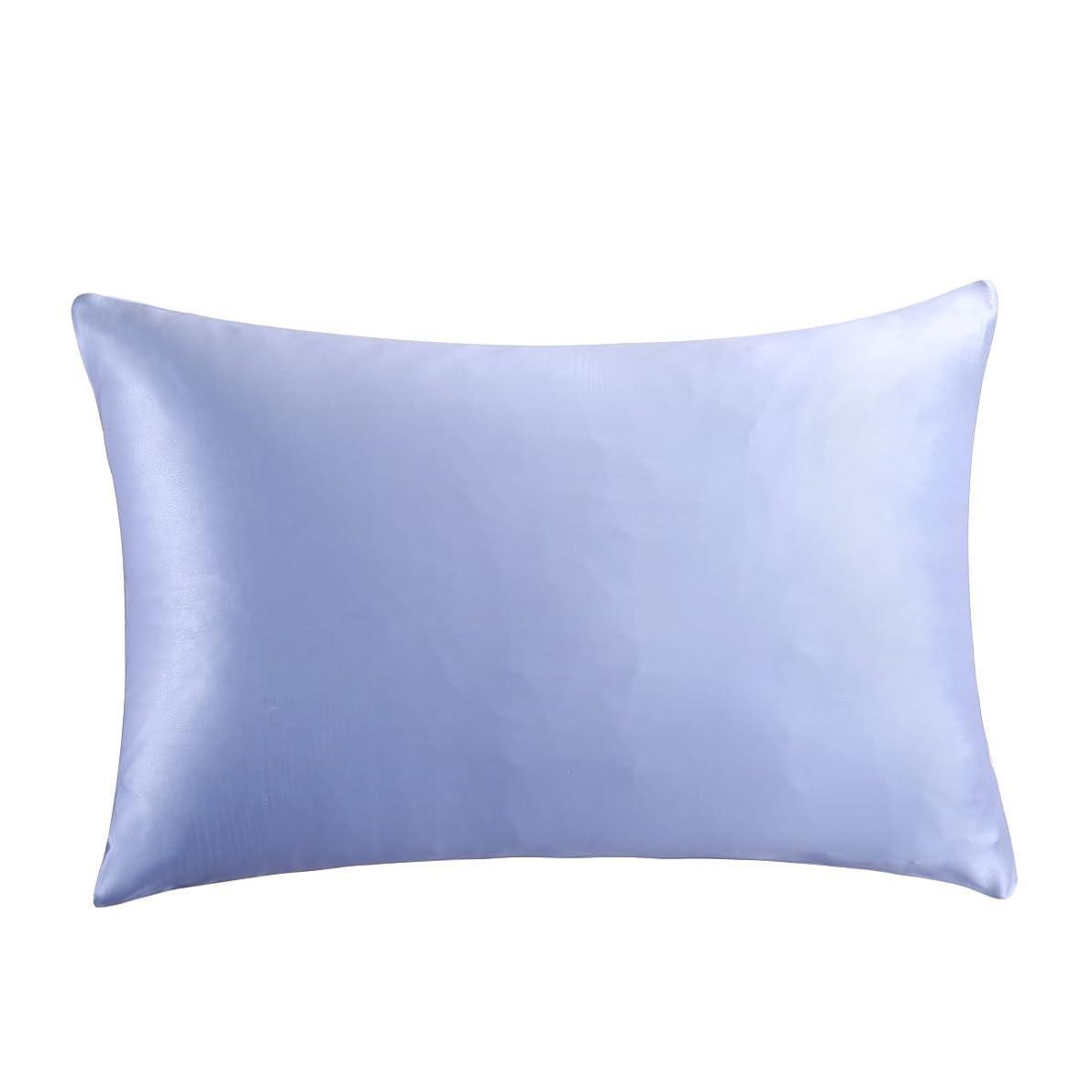 OOSILK Mulberry Silk Pillowcase with Hidden Zipper, Cotton Underside,King(20inx 36in),Light Blue,1pc