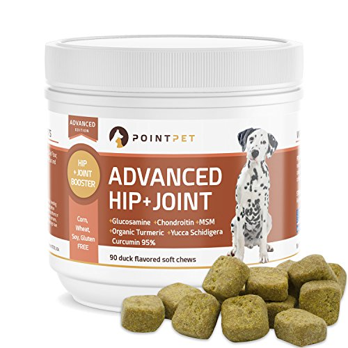 Top 10 best selling list for pointpet advanced hip and joint supplement for dogs