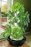Foody 12 Hydroponic Tower - Indoor Outdoor 44-Plant Vertical Garden