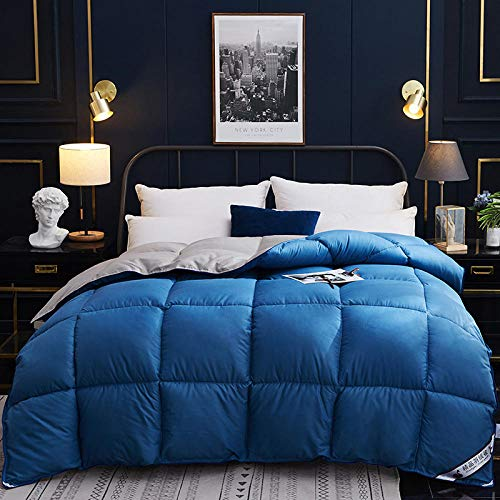 King Size Duvets 4.5 Tog Goose Feather and Down Duvet 100% Cotton Shell Anti-dust mite & Feather-proof Fabric, All Season- Classic -Anti-allergy-Cooling-Duvet Quilt-blue gray_220x240cm-4000g