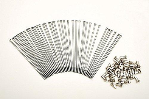 Kit 40 rayons et Nipples diamètre 3,5 mm Longueur 155 mm droites