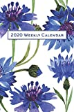 2020 Weekly Calendar: Watercolor Blue Carnations