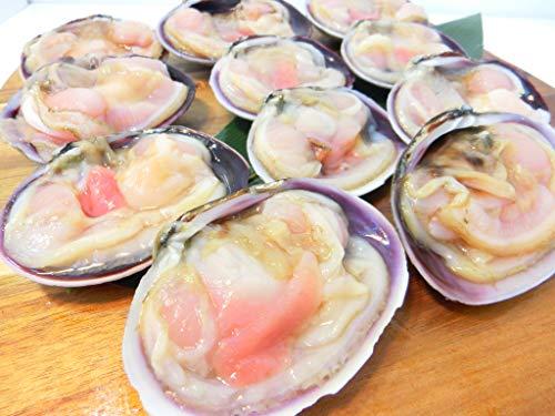 片殻 ウチムラサキ貝 1kg 片貝 大アサリ 約10粒から15粒入り 加熱用 冷凍 ・大アサリ1kg・