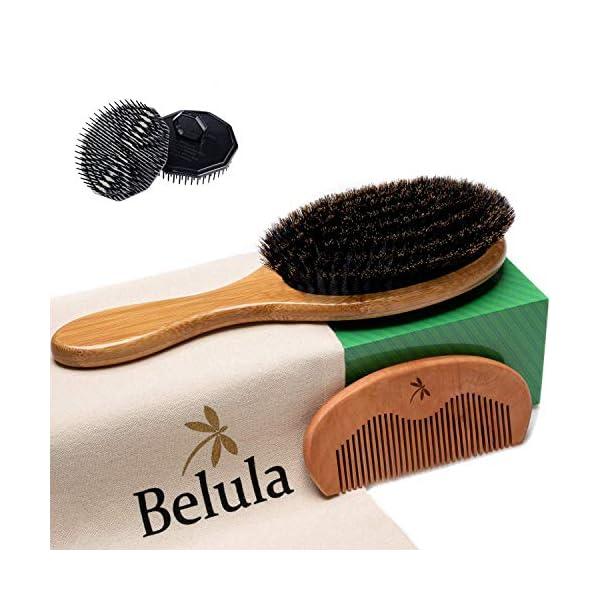 Beauty Shopping 100% Boar Bristle Hair Brush for Men Set. Hairbrush for Thin, Normal and Short Hair.