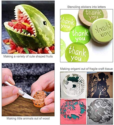 Weeding Craft Tools Craft Weeding Tools for Vinyl 39 Pack Craft Vinyl Tools Weeding Kit for Weeding Vinyl, Silhouettes, Cameos, Cutting,Lettering