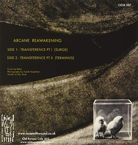 "Arcane Reawakening (Vinyl Coloured Edt. 7"") [VINYL]"