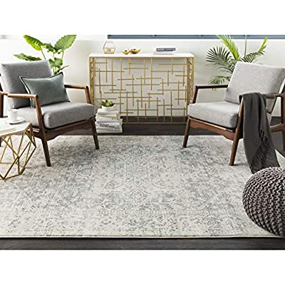 """Janine Gray and Beige Updated Traditional Area Rug 7'10"""" x 10'3"""