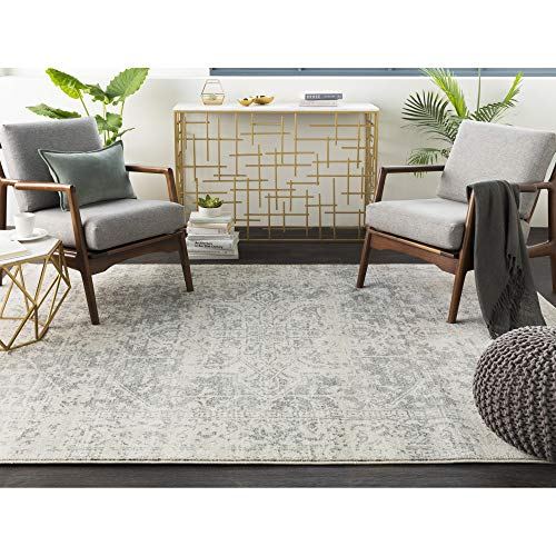 Janine Gray and Beige Updated Traditional Area Rug 6'7