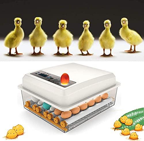 KKTECT Incubateur à Oeufs 9-35 Oeuf s Incubateur Couveuses Automatique pour Les œufs de Poule, Les œufs de Canard, Les œufs de Pigeon, Les œufs d'oie