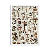 Bullidea Arte de la Cocina Decoración Botánica Arte de la Pared Lienzo Póster Impresiones Seta Cuadro de Pintura Vintage Herbario Decoración de la Pared del hogar Sin Marco 50x70cm