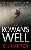 Rowan's Well: : a gripping psychological thriller with a killer twist