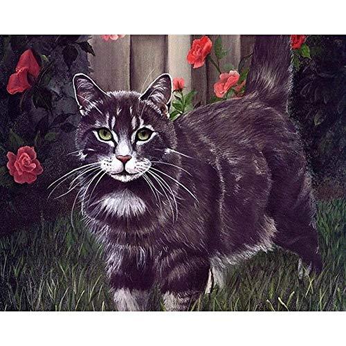 WLHZNBH Malen nach Zahlen Coole Katze Mit Brille Bilder Zeichnung Nach Zahlen Auf Leinwand Digital DIY Ölgemälde Home Decoration 40 * 50 cm (B) Mit Rahmen
