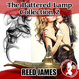 The Battered Lamp Collection 2: A Genie, Harem, Supernatural, Witch Succubus Erotica audiobook cover art