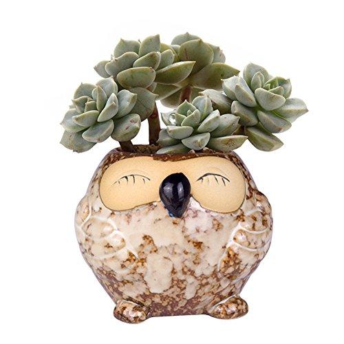 WITUSE Petits pots de fleurs en céramique en forme de hibou pour plantes succulentes d'intérieur et d'extérieur