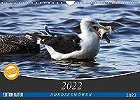 NORDSEEMOeWEN (Wandkalender 2022 DIN A4 quer): Bodenbrueter (Monatskalender, 14 Seiten )