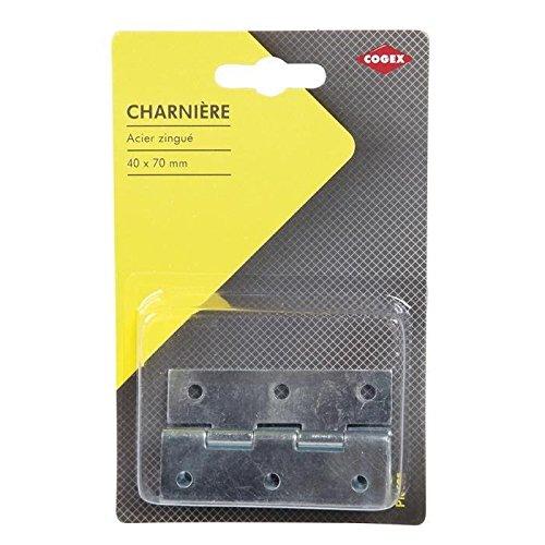 COGEX 85311 Charnière métal, Gris, 40 x 70 mm - 1 pack de 2 pièces