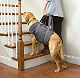 Orvis Dog Lift, X Large