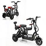 Patinete eléctrico de 3 ruedas, motorizado, 700 W, doble accionamiento, 48 V 15 A, iones de litio,...