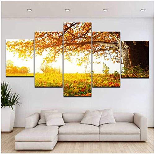 chtshjdtb Landschaft Sonnenuntergang Fotografie Leinwand Moderne abstrakte Malerei Leinwand Kunst Wandrahmen Bild für Wohnzimmer -30x40 30x60 30x80cm Kein Rahmen