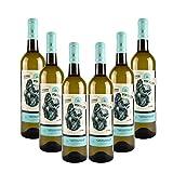 Vino Blanco joven Pontellón - D.O. Rías Baixas – Pack 6 botellas Vino Pontellón – Selección vins&co barcelona – 750 ml