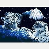DIY 5D Diamante Pintura Completo Kits Pinturas por Numeros, Bordado Punto de Cruz Manualidades Planeta animal tigre Art para Decoración de Pared del Hogar Regalos para adultos y niños 30 * 40cm