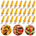 BigOtters 30PCS Corn Holders, Large Size Stainless Steel Corn Holder with Storage Box Twin Prong Sweetcorn Holder Corn on The Cob Skewers Fruit Fork for Kitchen Tool Outdoor Home BBQ Cooking
