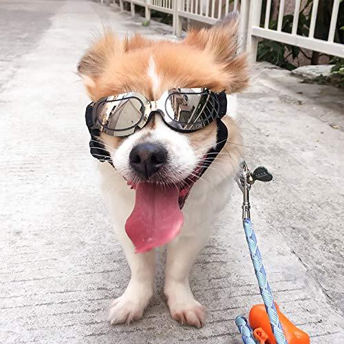 Hunde Sonnenbrille Hundebrille Hundesonnenbrille UV-Schutz Haustierbrille Anti-UV Augenschutz Welpenbrille Mit Verstellbarem Kopf Wasserdichte Winddichte Sonnenbrille Für Kleine Mittelgroße Hündchen