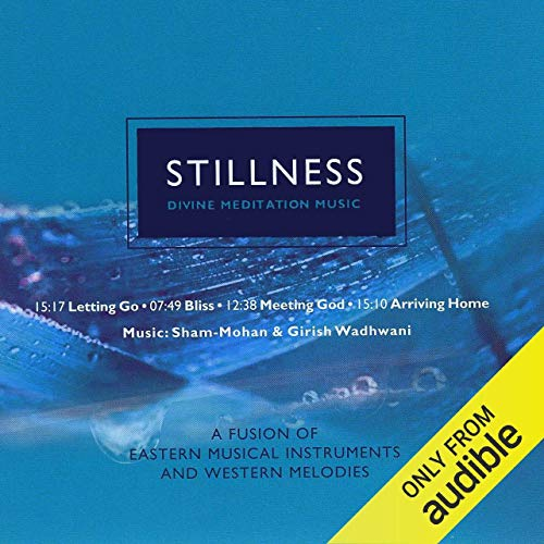 Stillness audiobook cover art