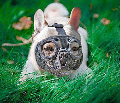 Short Snout Dog Muzzles- Adjustable Breathable Mesh Bulldog Muzzle for Biting Chewing Barking Training Dog Mask (shortmuzzle-Grays, Gray)