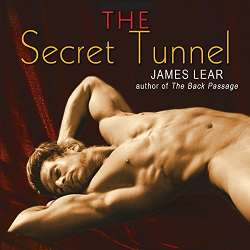 The Secret Tunnel audiobook cover art