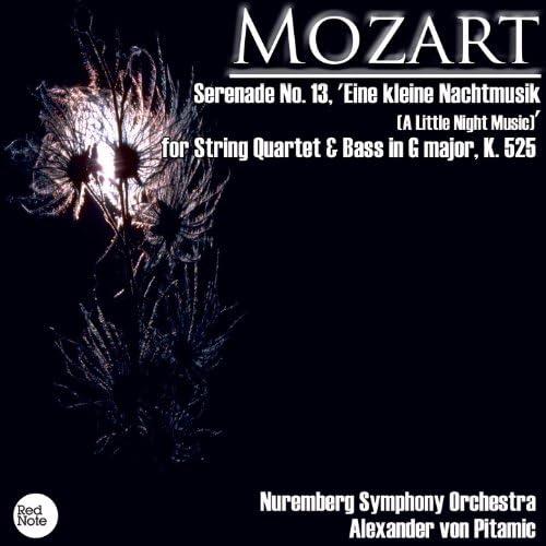 Nuremberg Symphony Orchestra & Alexander von Pitamic