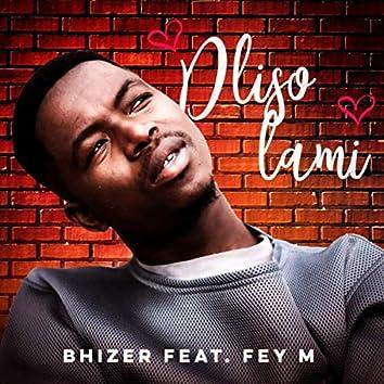 Dliso Lami (feat. Fey M)
