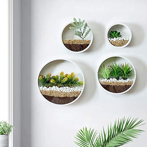 Set assortito di 4 vasi rotondi da parete, in metallo, in stile retrò, fioriere decorative da parete, rotonde, in ferro, stile vintage, per tillanzia o piante grasse