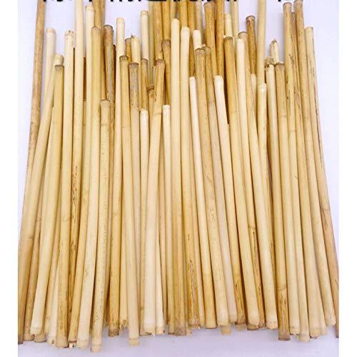 seveni 50 Pcs Poteaux de Soutien aux Plantes, Jardin Poteau de Soutien à Tige Unique, Plante Cultiver Tige de Support en Bambou Fournitures de Jardin Extérieur Jardinage Pot de Fleurs Cannes Cannes
