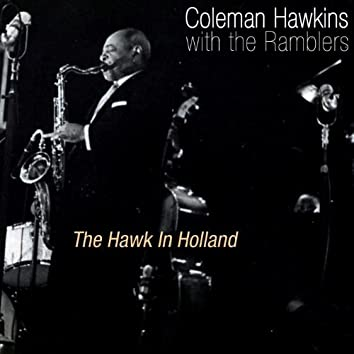 The Hawk In Holland